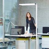 Waldmann LED staande armatuur uplighter Lavigo _